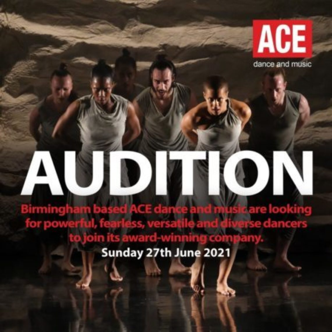 Audizione ACE